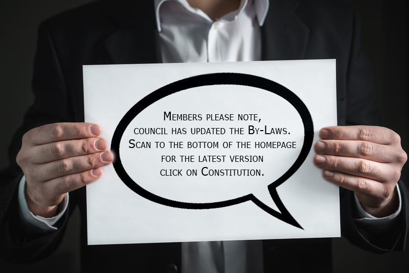 Constitution & By-Laws Updated